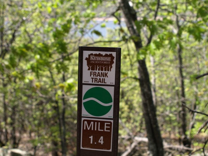 5. Keystone National Forest, Sand Springs