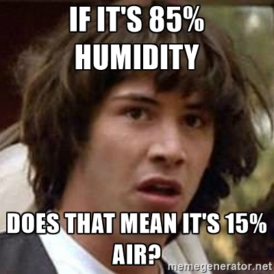 6. The humidity.