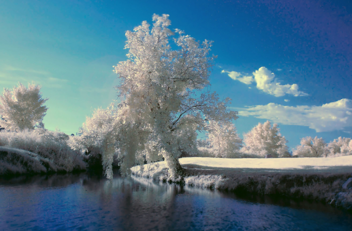 15. The iced-over Midwest City looks magical.