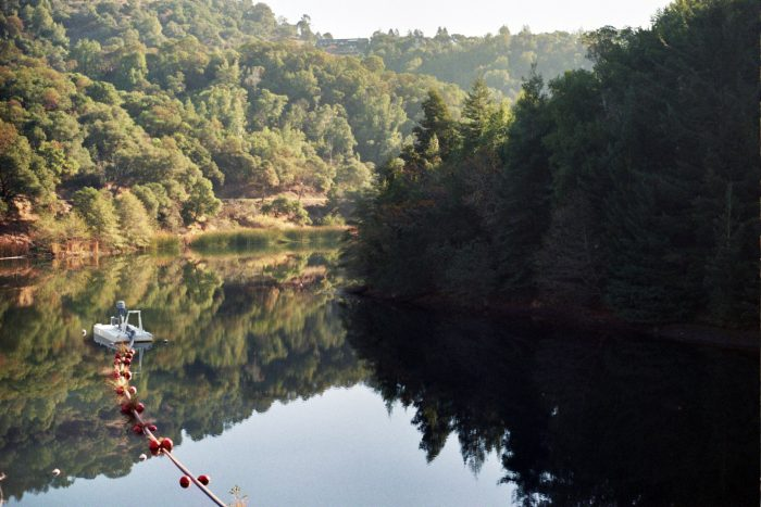1. Phoenix Lake: A small, serene oasis in Marin.