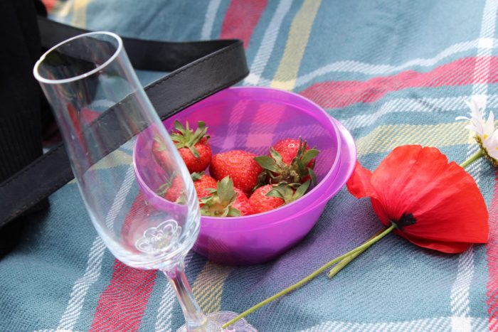 10. Have a picnic