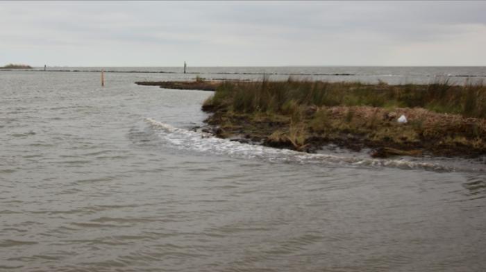 1. Marsh Island