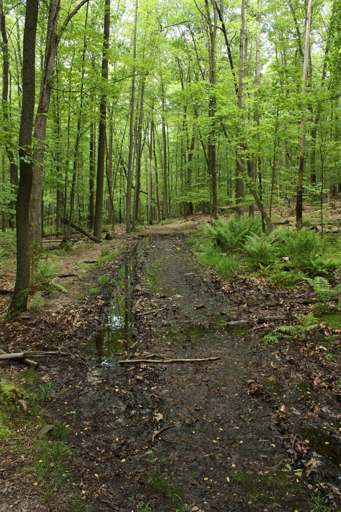 raven rock trail 2