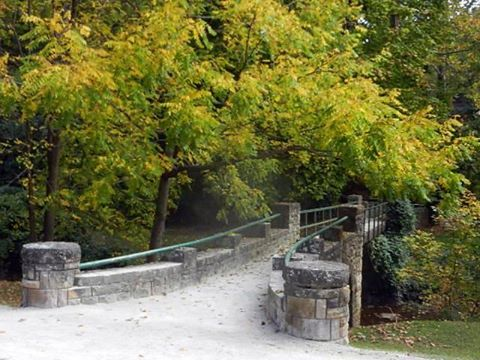 3. Get some fresh air and enjoy a stroll in your local park or get even closer to nature and take a walk in the woods.