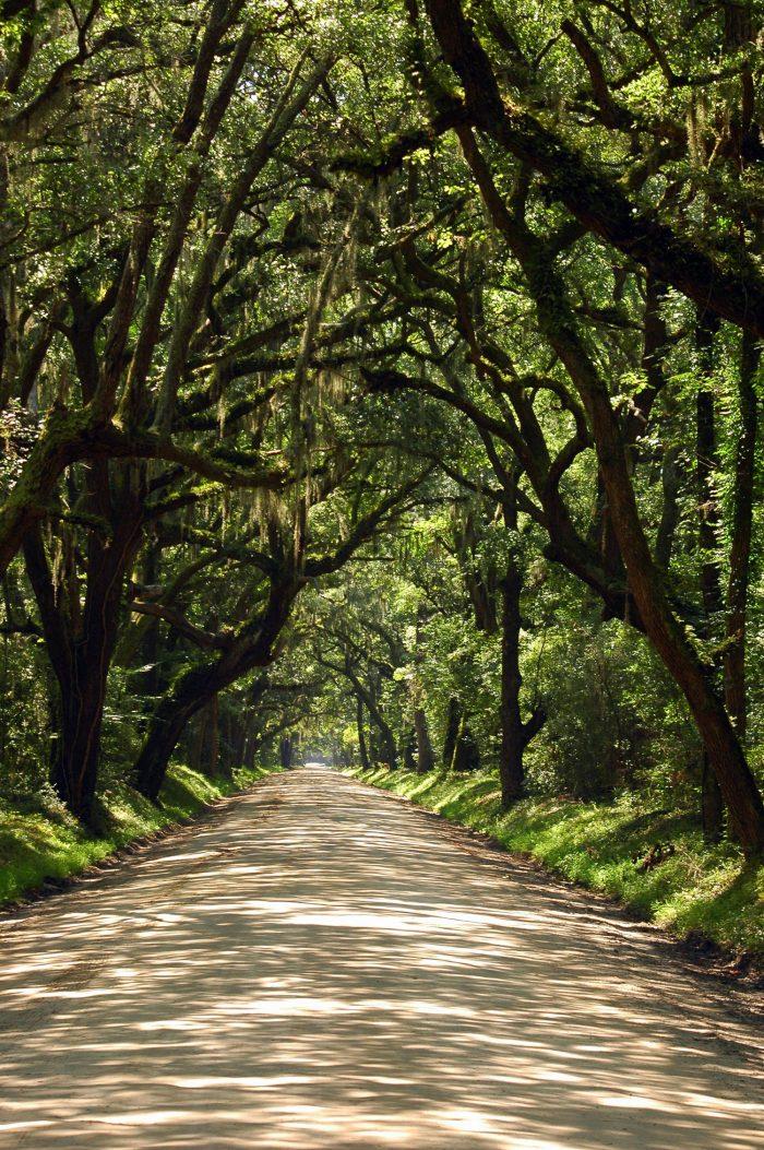 4. Botany Bay Road