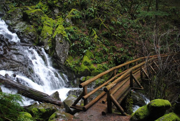 8. Washington: Rodney Falls