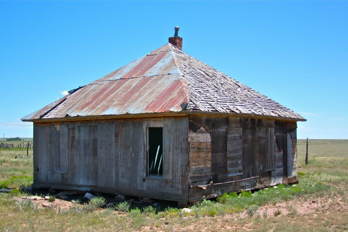 6. This derelict house lies between Mosquero and Roy. Make up a story for it involving a family feud, a llama, and a water tower. Go!