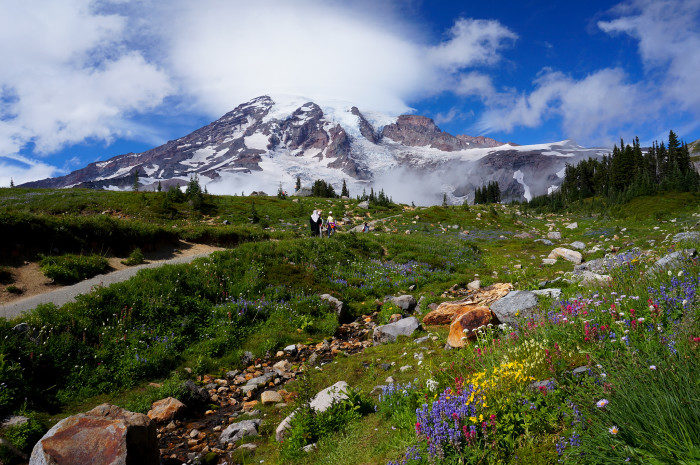 Washington:  Skyline Trail, Mount Rainier