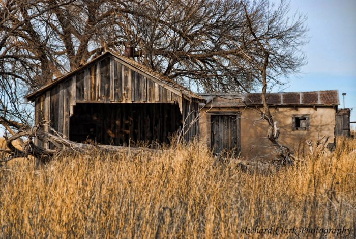 10. Did someone once live in this teeny, overgrown home, or were these buildings just used for storage?