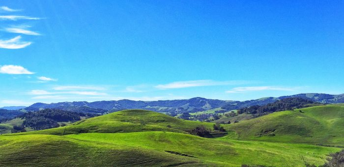 6. Sonoma County