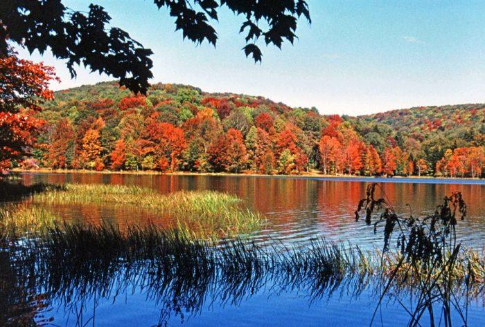 4. Summit Lake