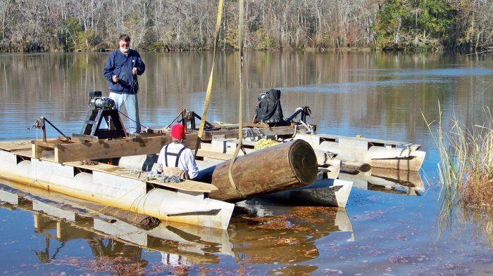 swamp-logging