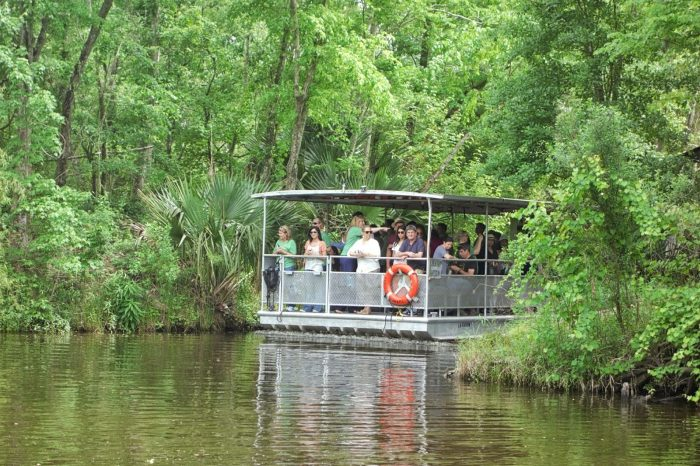5. Take an airboat ride in Lafitte.