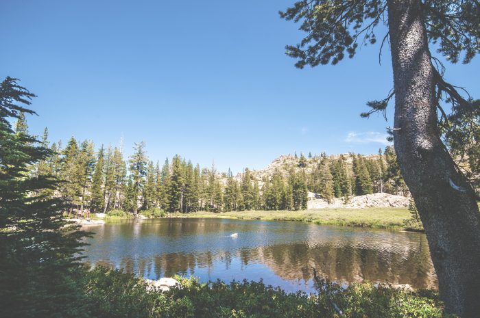 12. Squaw Valley Area