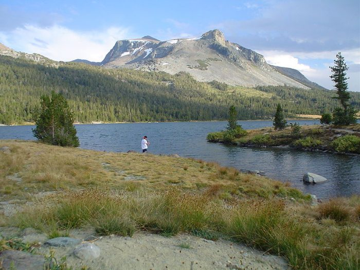 5. Tioga Lake, Mono County