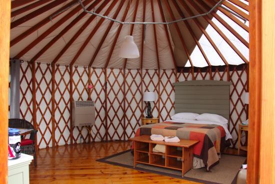 tree bones yurt