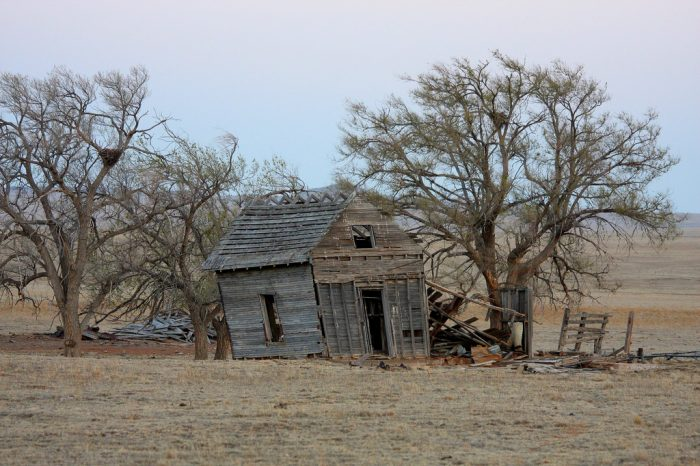 8. An old outbuilding in Union County appears to have taken quite a battering from the wind.
