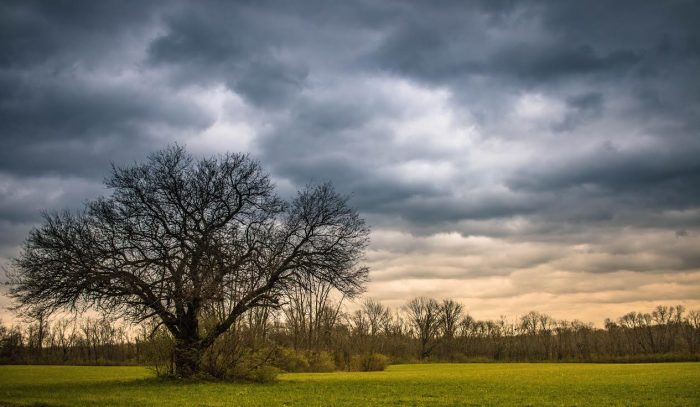 11. Pictured is the calm just before a storm in Germantown.