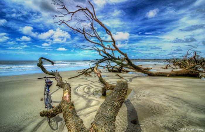 South Carolina: Hunting Island State Park