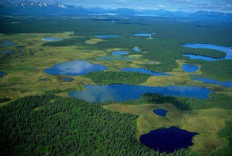 Aerial of Wood TikChik State Park