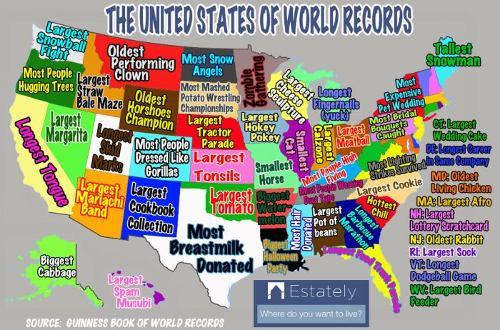 8. What World Record Does Each U.S. State Hold?