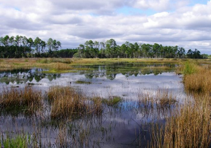 """The Nature Conservancy even named the area one of the """"Last Great Places in America."""""""