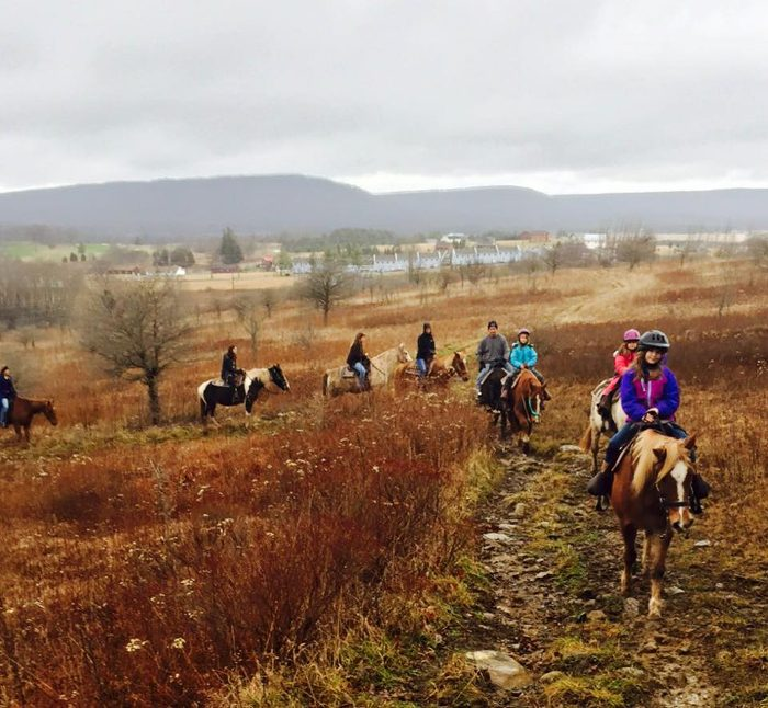 Mountain Trail Rides offers horseback riding through the scenic Canaan Valley Resort State Park.
