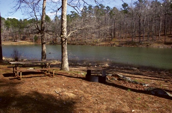 The park has 17 primitive campsites, all of which feature a picnic table, grill, and a fire ring.