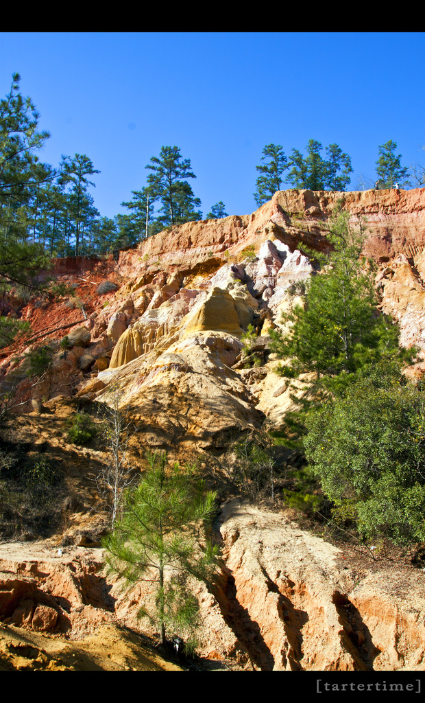 Officially named Red Bluff, Mississippi's Little Grand Canyon is located near Foxworth.