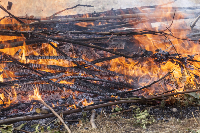 1. Want to burn yard waste in Buckner, Missouri? It better not be Sunday, because then you'd be breaking the law.