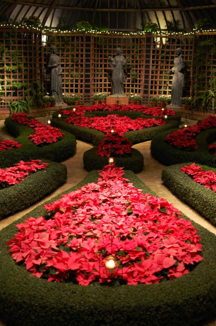 The Christmas flower and light displays are especially popular, drawing countless visitors each year.