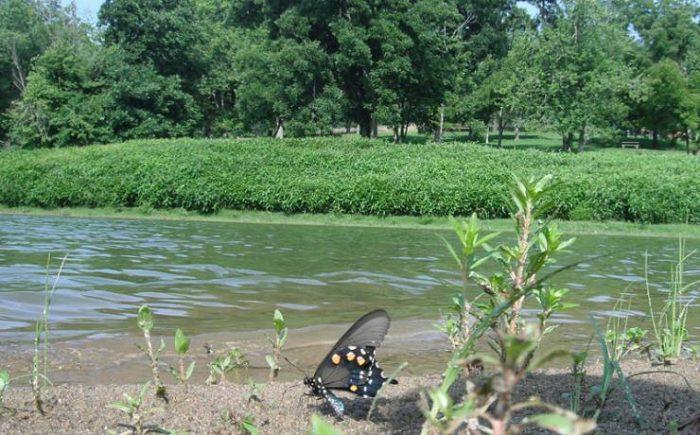 10. Trail of Tears State Park – Jackson, Mo.