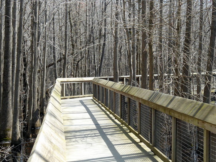 1024px-Louisiana_Purchase_State_Park_004