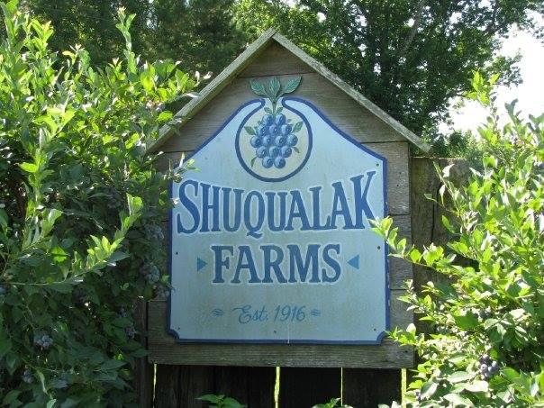 2. Shuqualak Blueberry Farm, Frierson, LA
