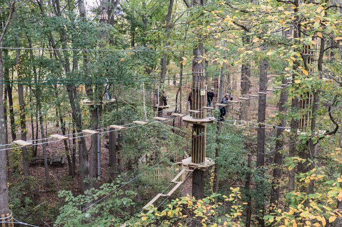 The treetop course features 42 crossings and 3,166 total feet of line and course