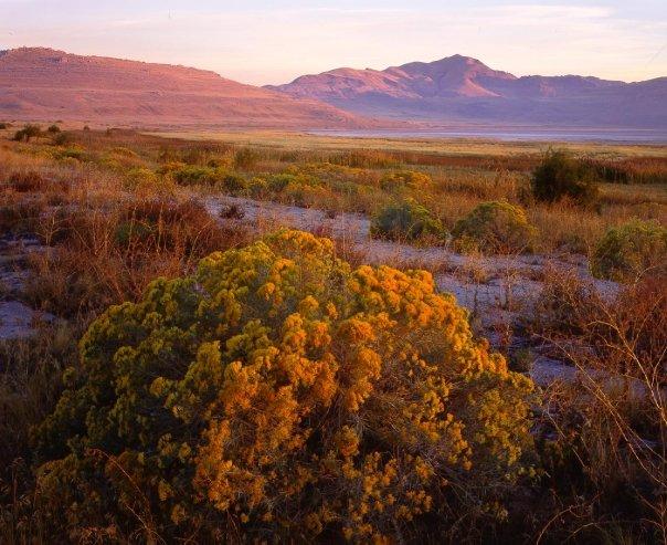 1. Antelope Island State Park
