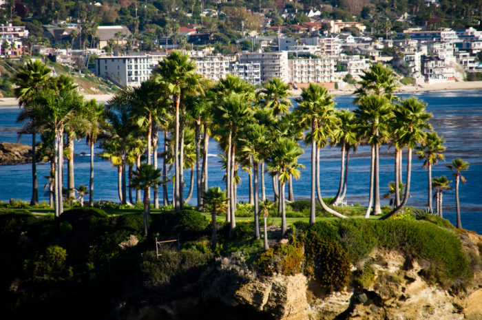 2. A slice of heaven at Laguna Beach! Palm trees and blue skies have never looked so pretty.