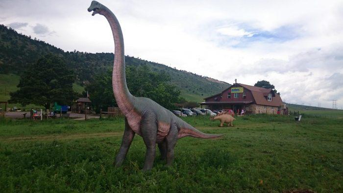 8. Dinosaur Ridge