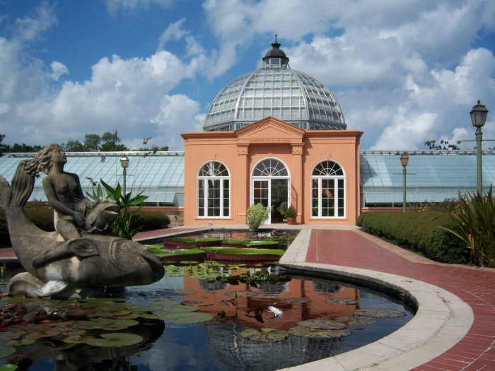 4) Discover the Amazing Plants at the Botanical Gardens in City Park.