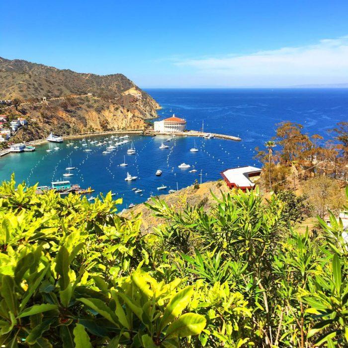 3. Catalina Island