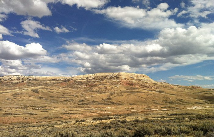 8. Fossil Butte National Monument