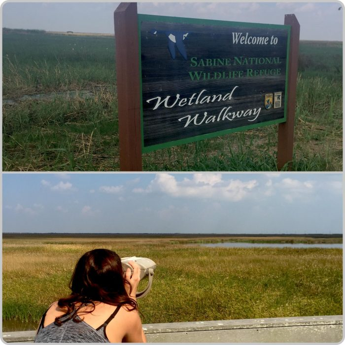 The visitors center at the refuge can be found at 3000 Holly Beach Highway, in Hackberry, LA, where the Sabine Wetland Walkway trail is located.