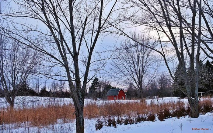 8. The rural scenes near Lake Rebecca are absolutely amazing during the snowy months.