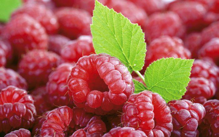 7.  Pick fresh fruit.