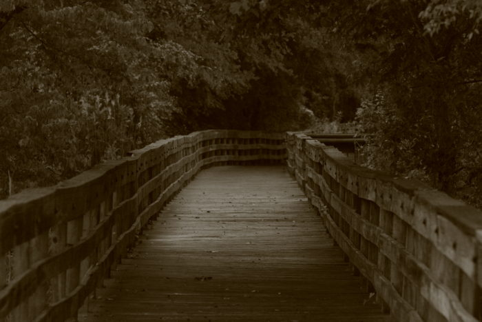 9. James D. Martin Wildlife Park Boardwalk