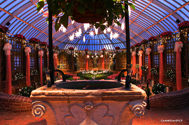 ...before bidding farewell to Phipps Conservatory until next time.