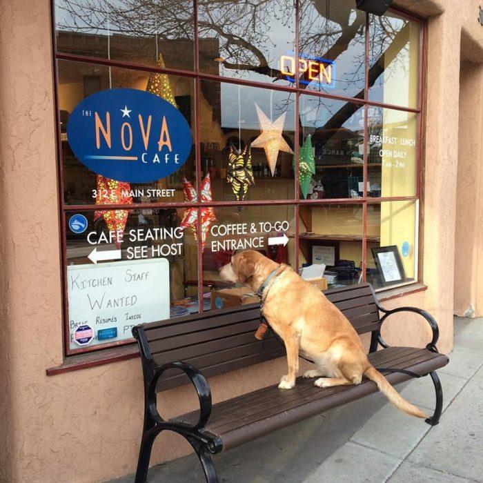 2. The Nova Cafe, Bozeman