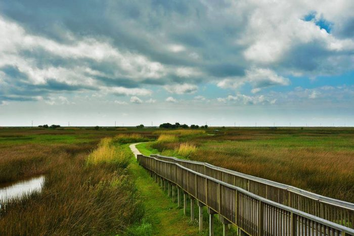 This Wetland Walkway is a 1.5 mile trail that offers plenty of wildlife observation opportunities.