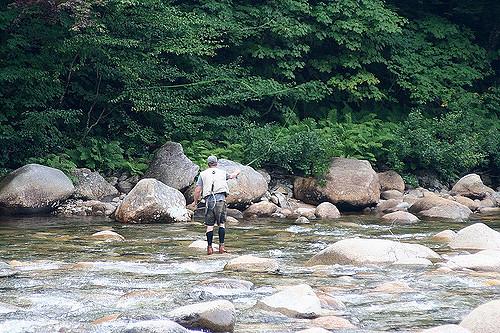 3. Pemigewasset River, Bristol