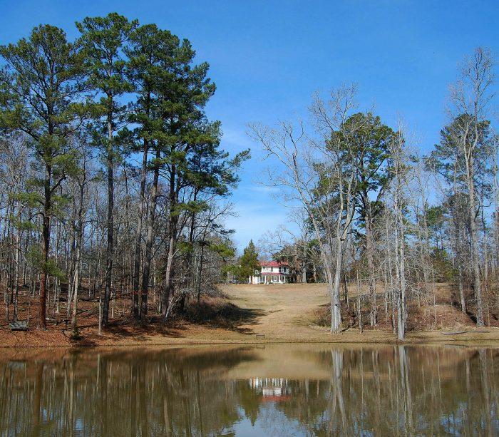 6. Seed Lake